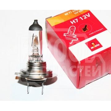 лампа h7 12-55 renault motrio